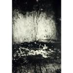 """Untitled Edenwald Site #2 (1996, 38x19"""", 45x25"""")"""